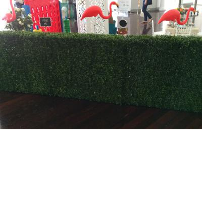 Hedge for hire - Tiny Tots Toy Hire (Sydney)