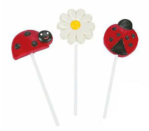 Ladybug lollopops - The Little Big Company