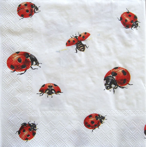 Ladybug napkins - Party & Co